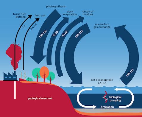 ap environmental science identifying greenhouse effect